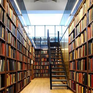 Библиотеки Чистоозерного